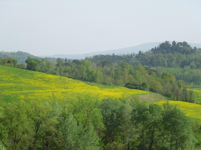 wandelen-toscane-lente-3